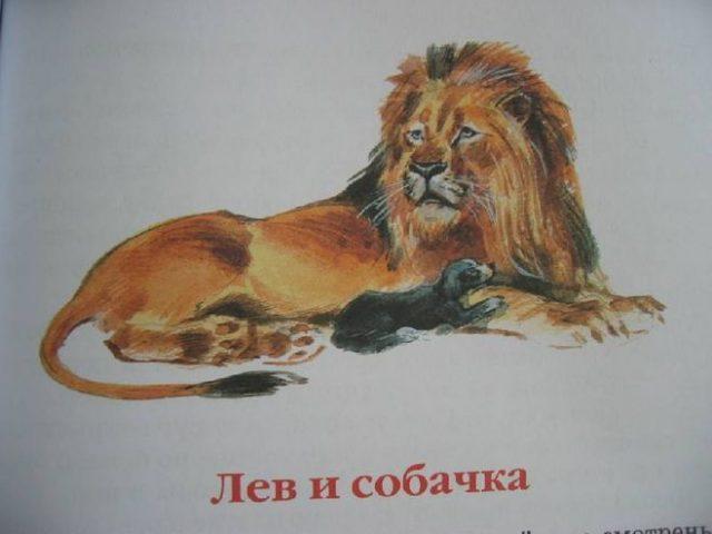 Картинки были лев и собачка
