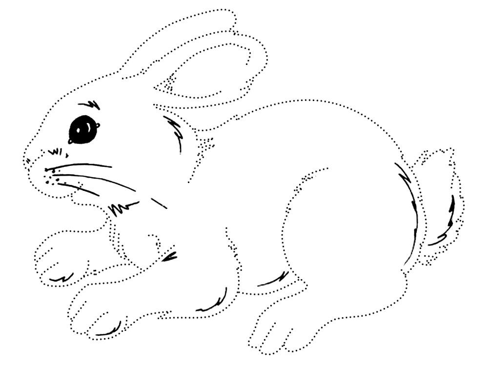 картинка раскраска заяц без ушей ветчиной, белыми грибами
