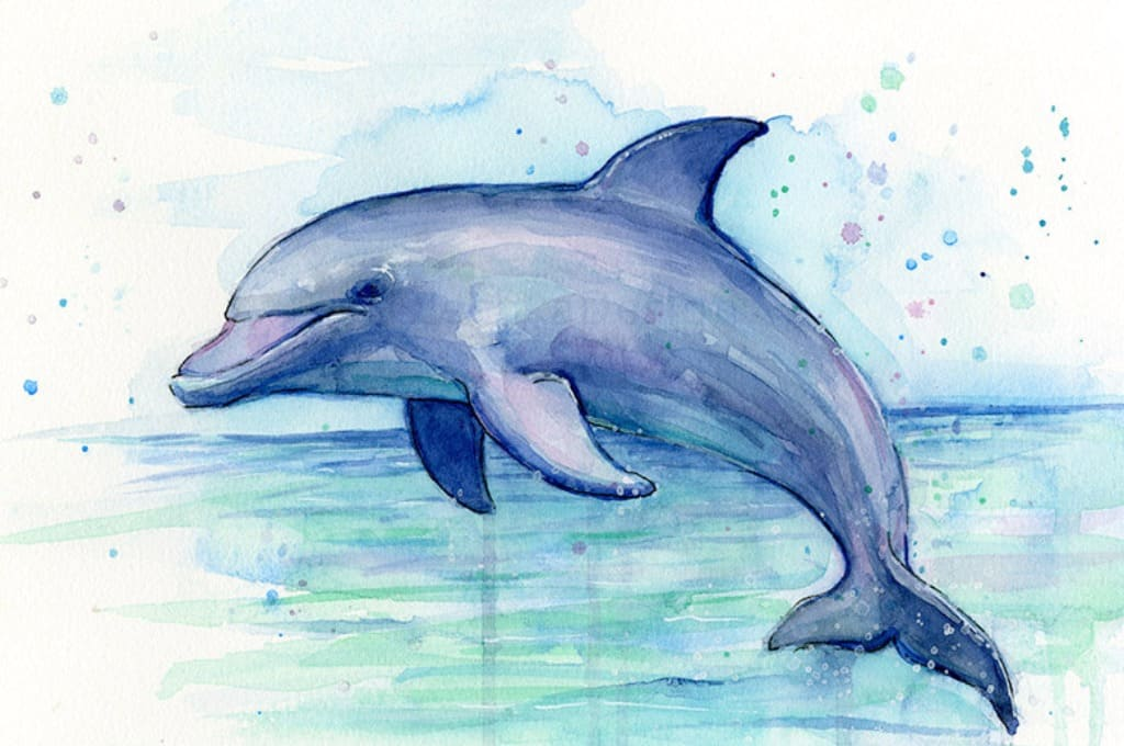 Раскраска дельфин в море на закате откуда