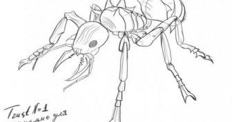 Рисунки карандашом муравей (24 фото)