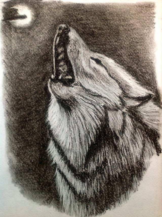 Картинка волк одиночка с карандашом