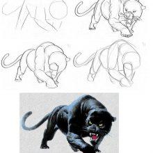 Рисунки для срисовки черная пантера (28 фото)