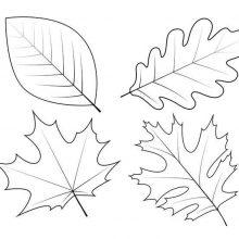 Рисунки для срисовки на тему осень (38 фото)
