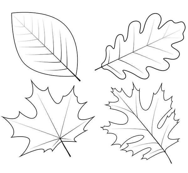 Рисунки для срисовки на тему осень (38 фото) 🔥 Прикольные ...