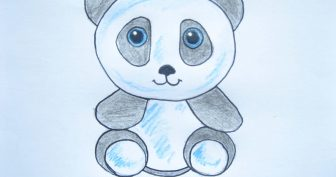 Рисунки карандашом милая панда (34 фото)