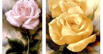 Черно-белые рисунки розы для срисовки (31 фото)