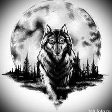Рисунки карандашом волк воет на луну (28 фото)