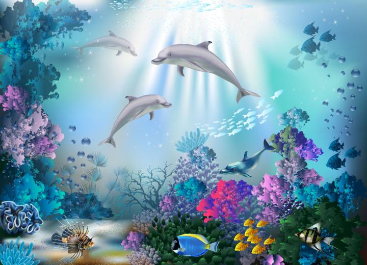 Рисунки дельфинов в море для срисовки (24 фото ...