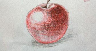 Рисунки яблока карандашом с тенью поэтапно (16 фото)