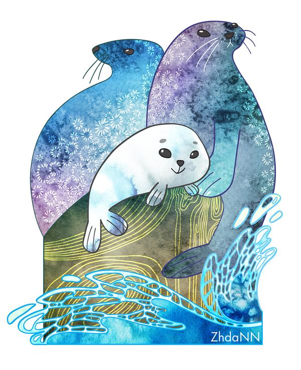 Картинка морского котика рисунок