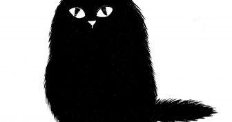 Рисунки карандашом черный кот (15 фото)