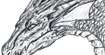 Рисунки карандашом китайский дракон (28 фото)
