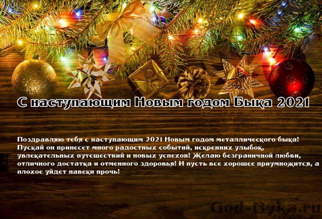 Прикольные Поздравления С Новым Годом 2021 - Pozhelaniya ...  Прикольные Поздравления с Новым Годом Лошади