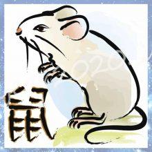 Картинки новогодние с символом 2020 года — крысой (33 фото)