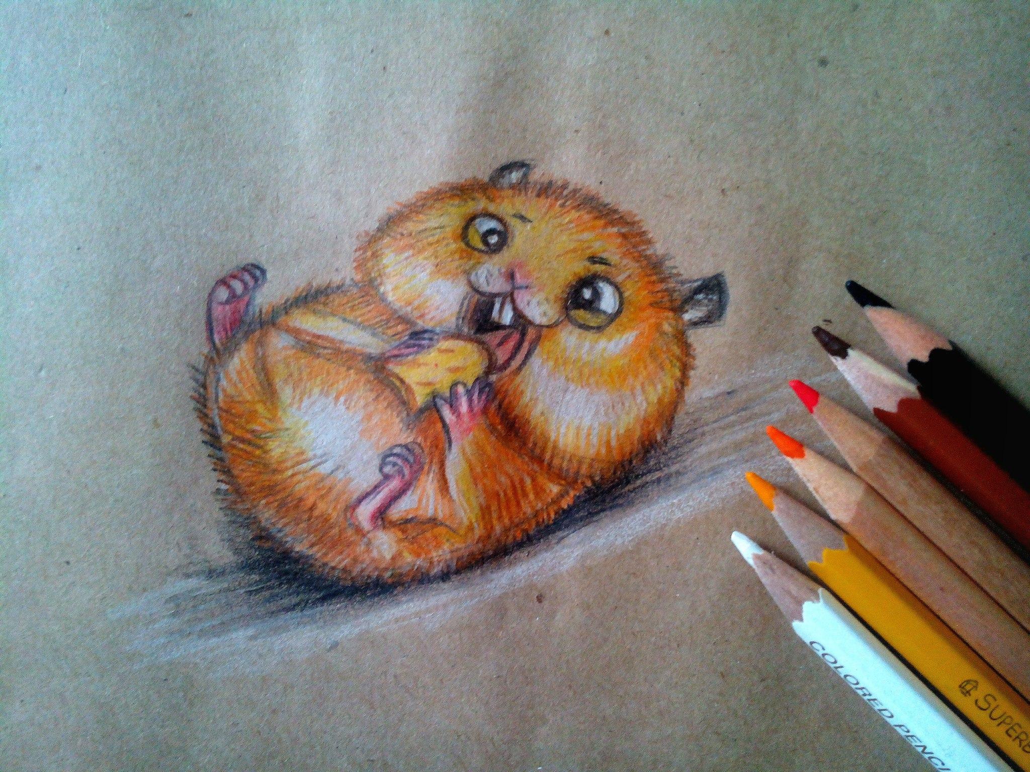 псевдоэрозия красивые картинки своими руками нарисовать цветными карандашами переводится айнского языка