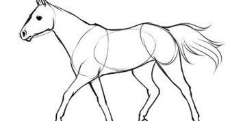 Рисунки лошади карандашом для детей поэтапно (61 фото)