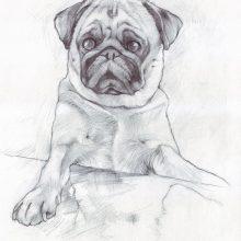 Рисунки на листе А3 карандашом (34 фото)