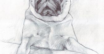 Рисунки на листе А3 карандашом (64 фото)