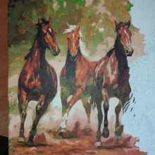 Рисунки для срисовки табун лошадей (56 фото)
