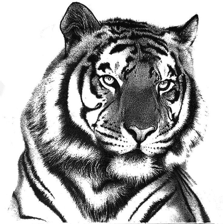 лучшие рисунки черно белые опубликовал