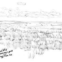 Рисунки поля карандашом (15 фото)