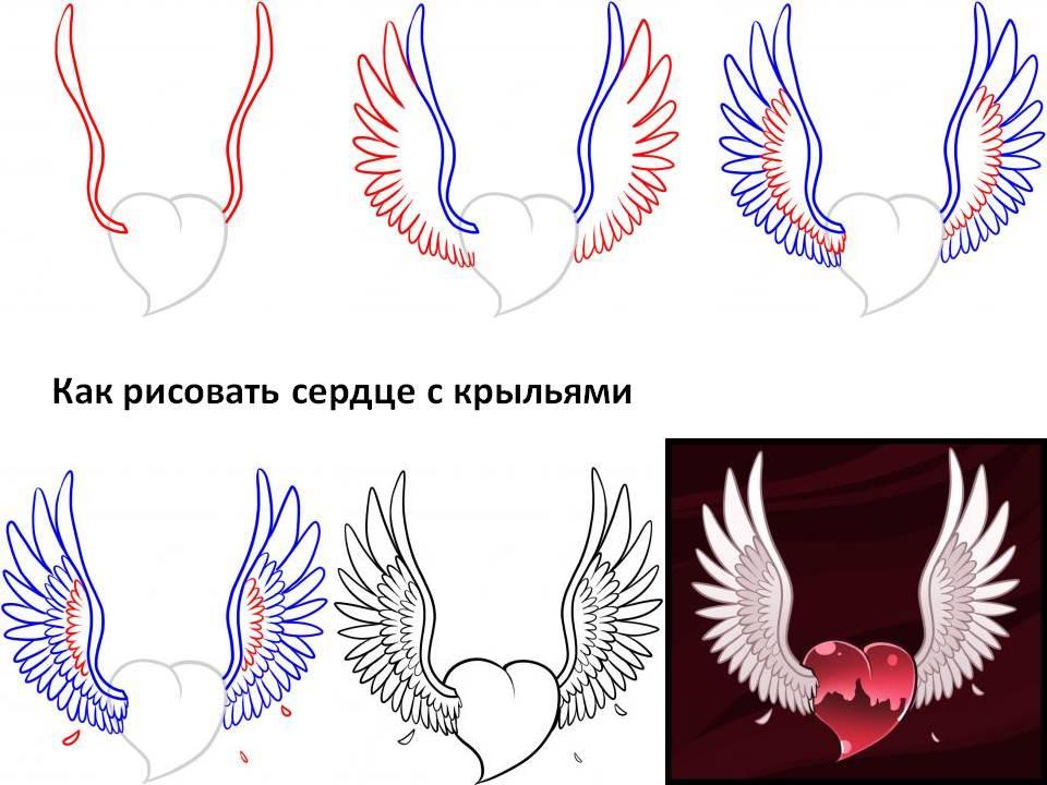 рисунки сердца с крыльями поэтапно