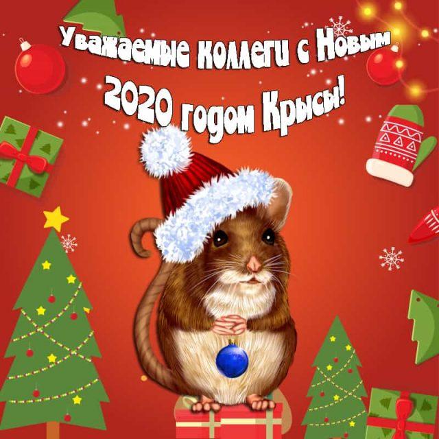 новые займы 2020 декабрь