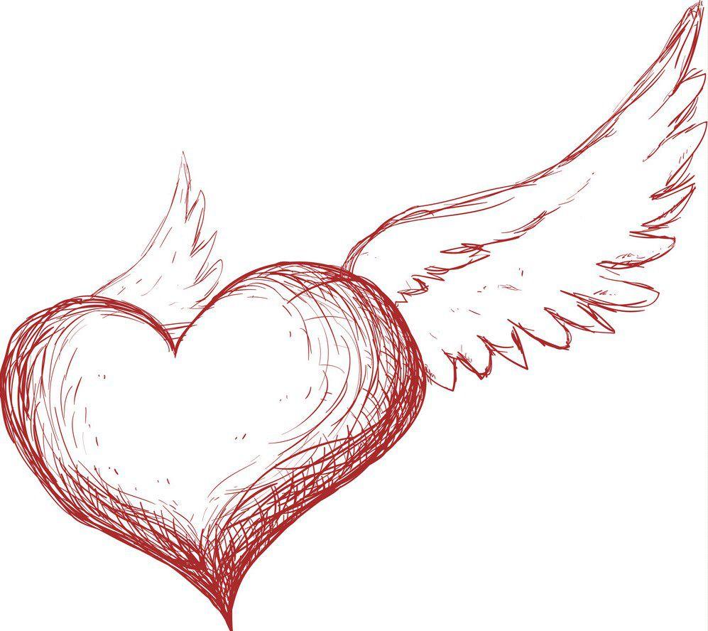 ваших рисунки сердца с крыльями поэтапно виды