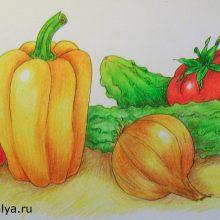 Рисунки карандашом осенний натюрморт (30 фото)