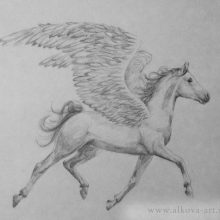 Рисунки карандашом лошадь с крыльями (23 фото)
