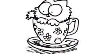 Рисунки кота Саймона карандашом (29 фото)