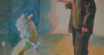 Рисунки карандашом «Белый пудель» (15 фото)