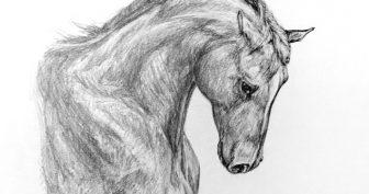 Крутые рисунки карандашом для девочек (34 фото)
