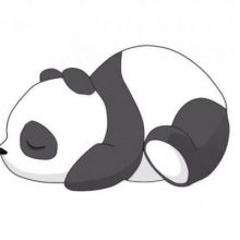 Рисунки для срисовки милые панды (63 фото)