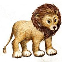 Рисунки карандашом диких животных (32 фото)
