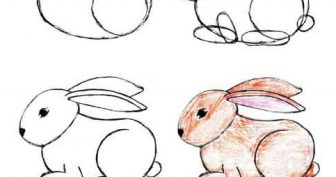Милые картинки зайки для срисовки (33 фото)