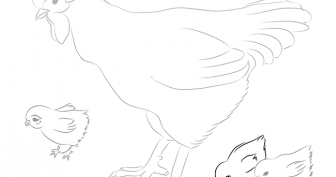 Рисунки карандашом для детей курица (24 фото)