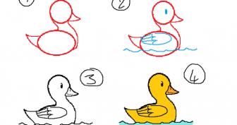 Рисунки карандашом для детей уточка (33 фото)