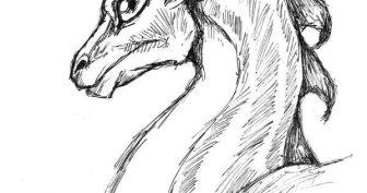 Рисунки карандашом дракон из Игры Престолов (61 фото)