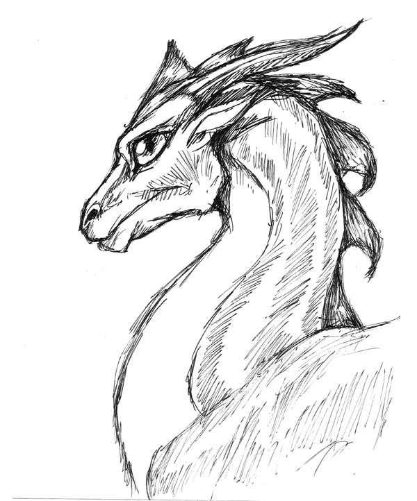 картинки драконы простым карандашом представляет собой огромный