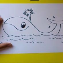 Рисунки карандашом для детей кит (30 фото)
