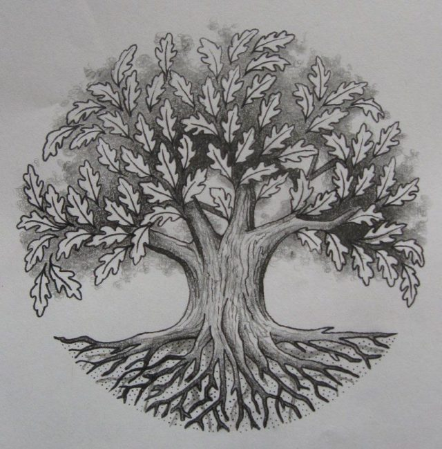 Рисунки карандашом дерево дуб (25 фото) 🔥 Прикольные ...
