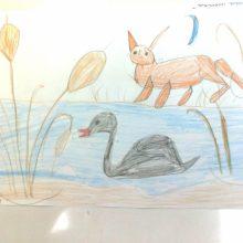 Рисунки к рассказу «Серая шейка» карандашом (25 фото)