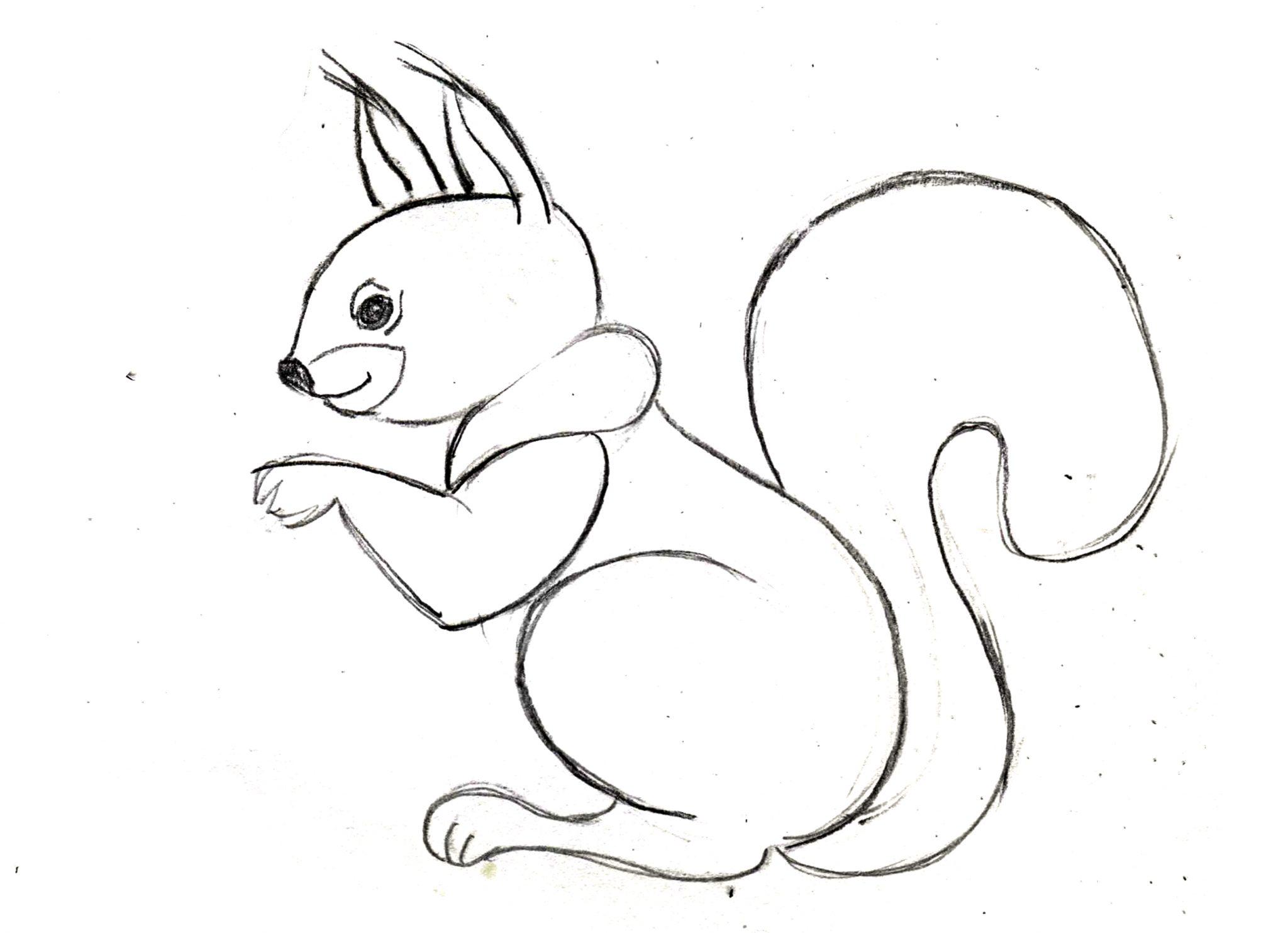 обратите картинки про животных которые можно срисовать первый