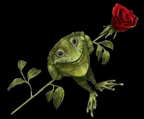 Жаба и роза картинки жабы
