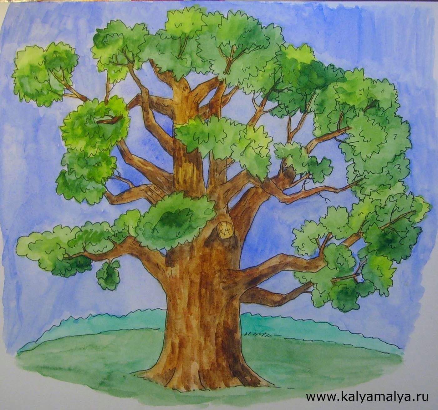 Картинки рисованные дуб
