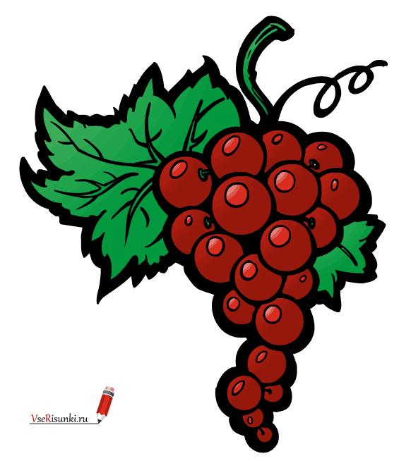 Рисунки карандашом листья винограда (20 фото) 🔥 Прикольные ...