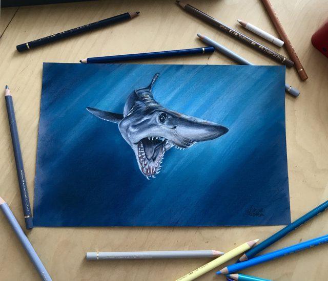 Рисунки для срисовки морские животные (33 фото ...