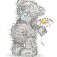 Рисунки для скетчбука мишки Тедди (59 фото)