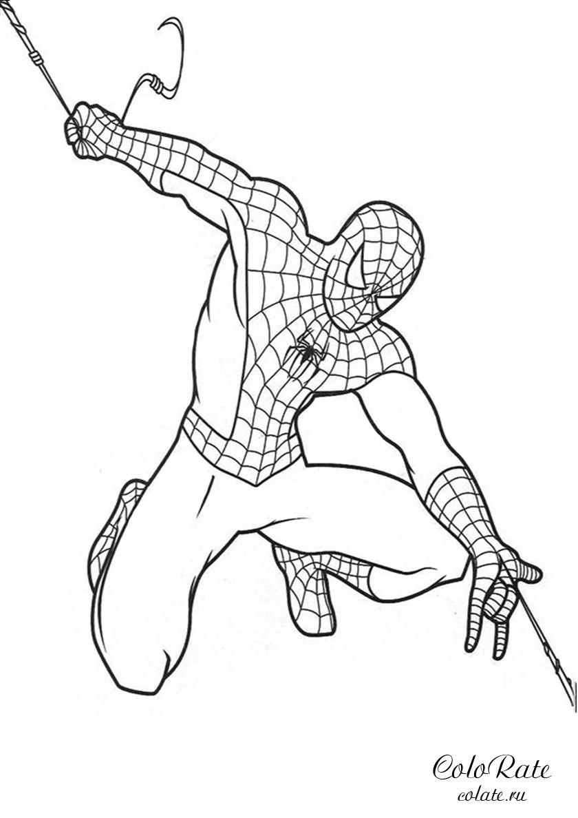 рисунки человек паук раскраска распространения